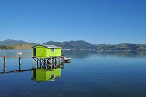 Półwysep Otago, Wyspa Południowa, Nowa Zelandia