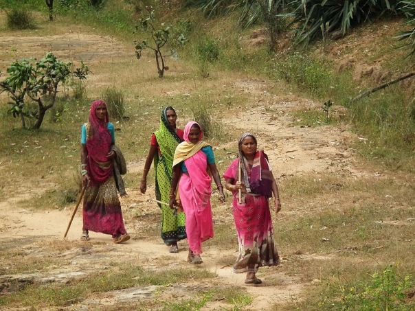 Typowo hinduskie kolory codzienne w stanie Madhya Pradesh