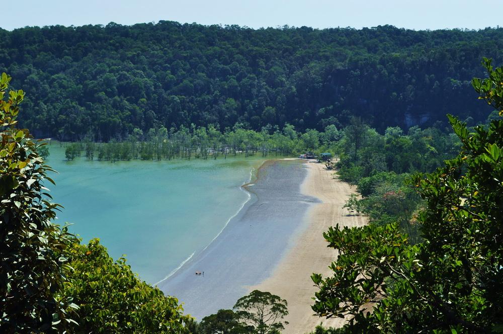 Lasy namorzynowe i plaze Bako