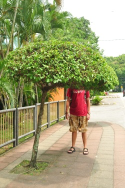 Azja dla Azjatów! Chodniki dla Malajów! (Kuala Lumpur, Malezja)