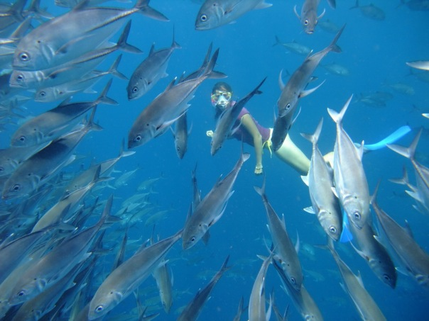 Podwodny włóczęga w otoczeniu tysięcy półmetrowych karanksów w okolicy Tulamben, u północnych wybrzeży Bali
