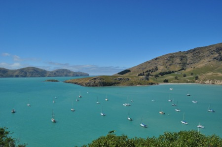 banks peninsula new zealand bay yacht