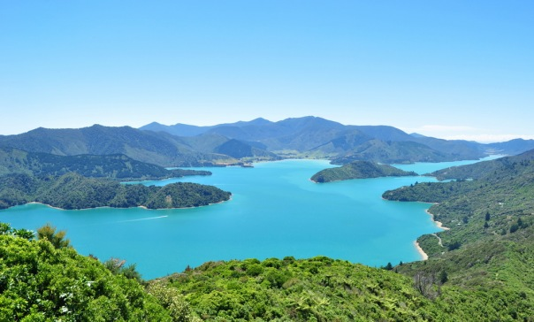 Pelorus Sound, Marlborough, Nowa Zelandia