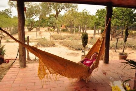 Vagabunda na sjescie w Chaco